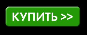 Купить билет в рублях